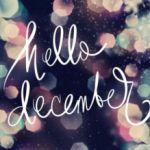 #Boekperweek & ILN: november