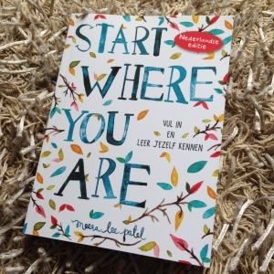 Start where you are – Meera Lee Patel